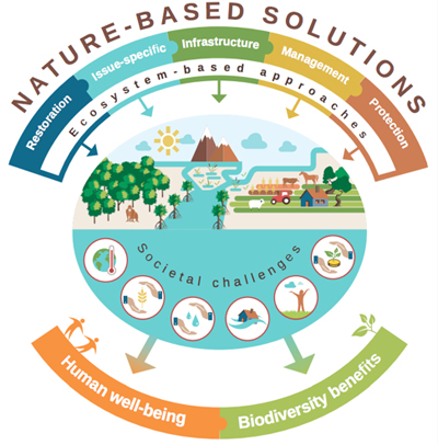 Fuente: Cohen-Shacham, E., Walters, G., Janzen, C. y Maginnis, S. (eds.) (2016). Nature-based Solutions to address global societal challenges. Gland, Switzerland: IUCN. xiii + 97pp.